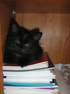 Tabitha, future scholar