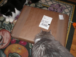 The package arrives: the girls inspect
