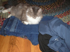 Sally poses with new jeans; note shortening to be done