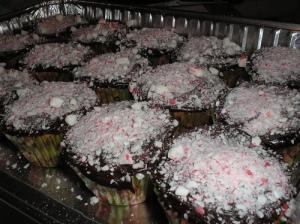 Peppermint cupcakes, chocolate ganache