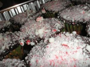 Peppermint cupcakes, chocolate ganache closeup