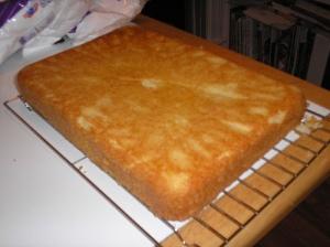 Vanilla cake, not burned