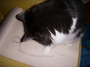 Sukey inspects my work