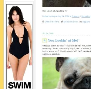 Product noncuteness: a pug's disdain