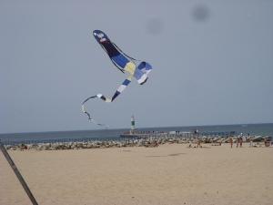 Snoopy kite