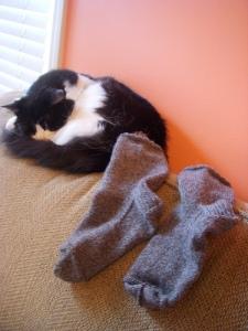 """Sukey """"Two Socks"""" Tawdry"""